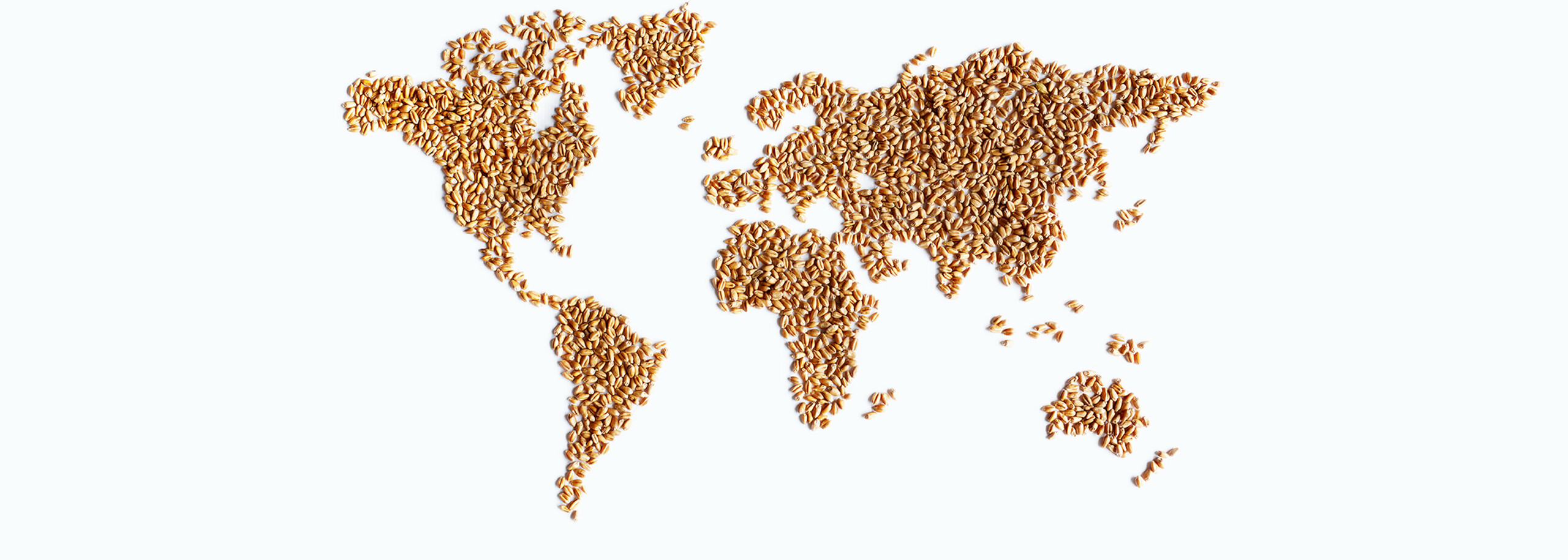 Picture world map made of grain