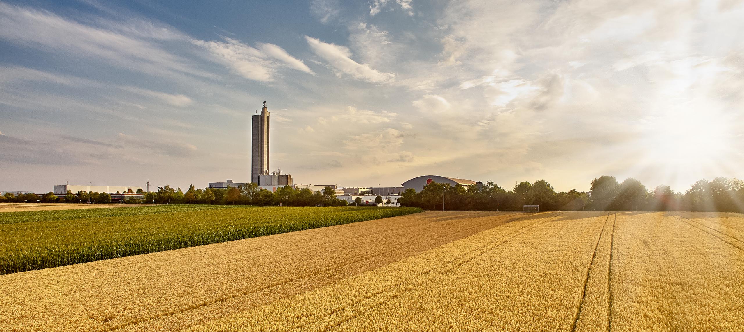 Abbildung SchapfenMühle Panorama mit Feldern